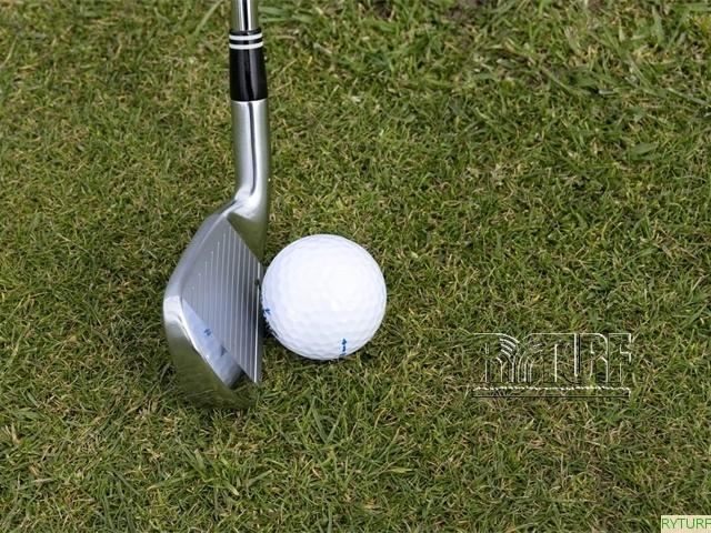 高爾夫練習場