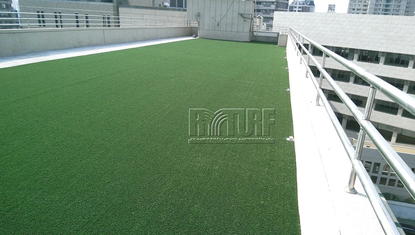 台南市台南護專頂樓人工草景觀