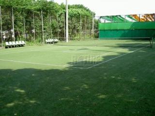 國立嘉義大學人工草網球場