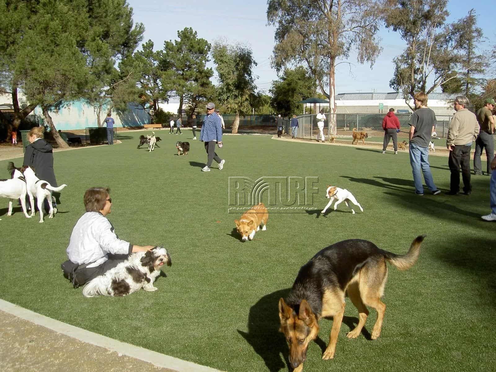 亮盟人工草寵物公園
