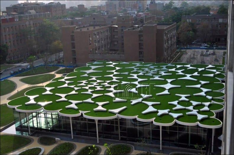台灣大學社科院人工草景觀